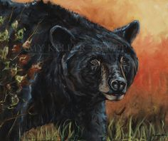 """Prominent Wisdom"", by acrylic on canvas. Original still available, very popular in giclee prints and fine art cards. Modern Impressionism, Bear Art, Art Cards, Black Bear, Giclee Print, Amy, Two By Two, Vibrant, Wisdom"