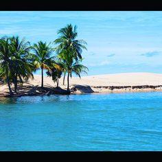 【doug.cg】さんのInstagramをピンしています。 《San Francisco Rivermouth  #sea #mer #mar #meer #바다 #海 #море #river #riviere #fleuve #fluss #sand #areia #sable #모래 #песок #砂 #palmtree  #palms #palmier #пальма #nature #agua #water #eau #naturebeauty #northeastbrazil #brazil #maceio #alagoas》