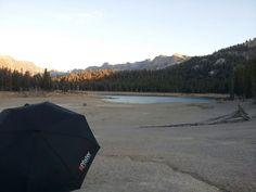 Pfister umbrella, USA