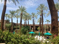 DoubleTree Resort by Hilton Hotel Paradise Valley - Scottsdale in Scottsdale, AZ