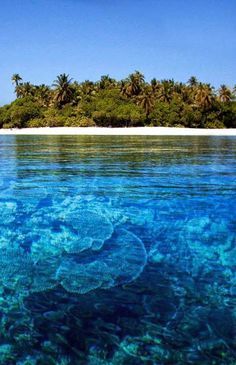 Linapacan Island, Philippines Clearest, bluest water in the planet