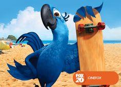 Blu es un guacamayo que se escapa de su jaula en un pueblo de Minnesota y se dirige a Río de Janeiro.  Río - Domingo 17 de noviembre, 22.00 #MeGustaFOX Mira contenido exclusivo en www.foxplay.com