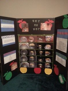 rusty nails science fair project 4th grade | Ashton | Pinterest ...