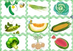 Rubrics, Plant Leaves, Vegetables, Plants, Projects, Activities, Health, Fruits And Veggies, Log Projects