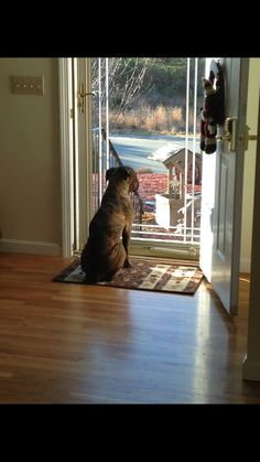 Nana waiting for me to get home