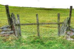 Old stone entrance to field / standing stones 600m NE of Cwmdarren, Trefeurig .