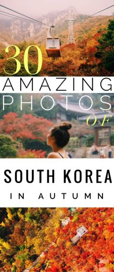 30 Amazing Photos of South Korea in Autumn--With sugary cinnamon stuffed pancakes, harvest bounty, toasty drinks, cheeky mountains and near-neon autumnal hues, the South Korea autumn just won at life.