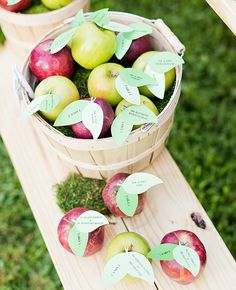 Freshly Picked Apple Escort Cards by Cassi Claire Photography | blog.theknot.com