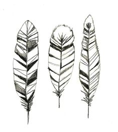 Hey, I found this really awesome Etsy listing at https://www.etsy.com/listing/85251962/feathers-print-of-original-drawing