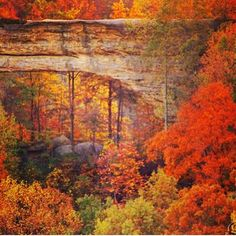 Natural Bridge State Park. Beautiful fall colors in Kentucky. Heaven on earth.