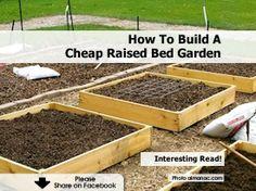 How To Build A Cheap Raised Bed Garden - http://www.hometipsworld.com/how-to-build-a-cheap-raised-bed-garden.html