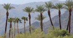 The Desert Retreat House: A Day of Rest