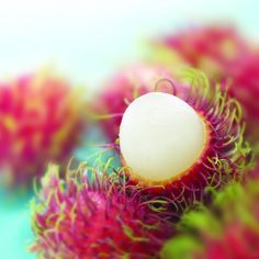 """Rambutan - Nephelium lappaceum - is a medium-sized tropical tree in the family Sapindaceae. The fruit produced by the tree is also known as """"rambutan."""" According to popular belief and the origin of its name, rambutan is native to Indonesia and Malaysia."""