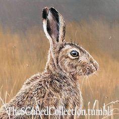 Bunny Rabbits, Buns, Animals, Animales, Animaux, Bread Rolls, Animais, Scones, Animal