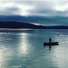 Blues, boats and a bird.  @thewdfw #hoodcanal #wildsidewa #blue #fishing #salmon #chum #pnw #weekend #sundayfunday #wildsidewa #staycation #onaboat