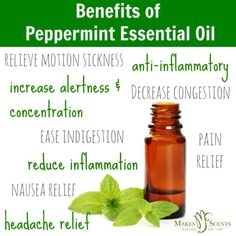 Feel the Scent-sation: 3 Benefits of Peppermint Essential Oil Peppermint Oil For Headaches, Peppermint Essential Oil Benefits, Essential Oils Guide, Young Living Essential Oils, Spa, Natural Headache Relief, Nausea Relief, Pain Relief, Peppermint Plants
