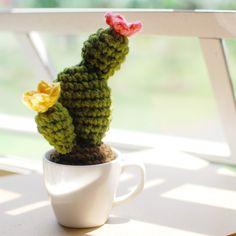 Fenêtre Crochet Cactus Motif Gratuit - Papier et paysages