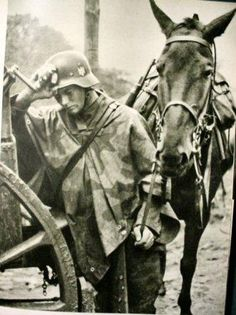 A weary German soldier with his horse...