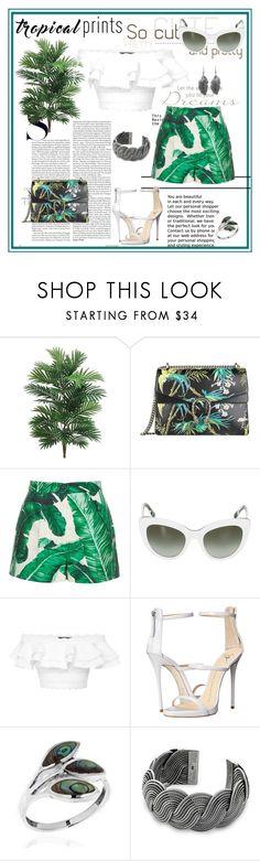 """Hot Tropics"" by snje2105 ❤ liked on Polyvore featuring Gucci, Dolce&Gabbana, Alexander McQueen, Giuseppe Zanotti, AeraVida, NOVICA, tropicalprints and hottropics"