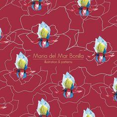 Maria del Mar Bonilla