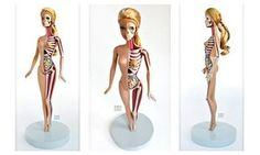 one of Jason Freeny's anatomical Barbie sculptures.