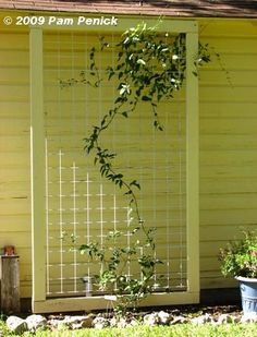 Trellis style to use for back of garage - painted frame with wide mesh