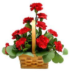 red carnation arrangement