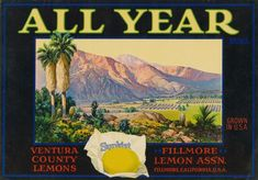 10 Fruit Crate Labels That Make SoCal Look Like Heaven | The Nosh | Food | KCET