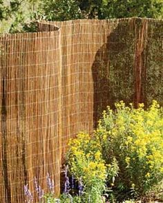 privacy fencing on the cheap    attach to existing fence with nearly invisible wire