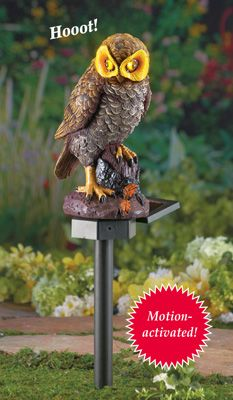 Solar Brown Hooting Owl Garden Stake From Collections Etc.