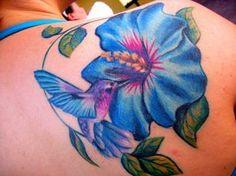 blue stargazer lily - Google Search
