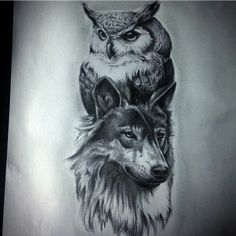 wolf and owl tattoo Wolf Tattoo Design, Tattoo Designs, Owl Tattoo Drawings, Tattoo Sketches, Tattoo Owl, Wolf Tattoos Men, Animal Tattoos, Girls With Sleeve Tattoos, Tattoos For Guys
