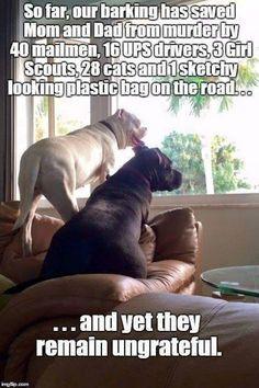 #stoppuppymills oh so true...
