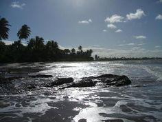 Grande lote beira-mar com fantástica localização em uma das melhores praias da região, na praia da Boca da Barra.  Veja mais aqui - http://www.imoveisbrasilbahia.com.br/boipeba-terreno-beira-mar-com-6000m2-a-venda