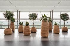 Originating from South Africa and exclusive to Gather Co in Australia comes a revolutionary collection titled - Indigenus. This stunning range of sculptural planters has been developed by a collaboration of world renewed designers, architects and artisans. Visit gatherco.com.au to view the full consignment. Wooden Garden Planters, Large Planters, Outdoor Planters, Planter Liners, Planter Boxes, Self Watering Plants, Interior Plants, Flowers Nature, Dream Decor