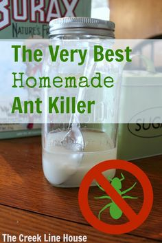 The Very Best Homemade Ant Killer Recipe