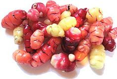 OCA (Latin name: Oxalis Tuberosa) ~  Oca is grown and used just like new potatoes, although they are smaller than potatoes. It has a lemony taste and is very easy to grow as long as you have a moderately long season. It is completely unrelated to potatoes and so of course not affected by blight.