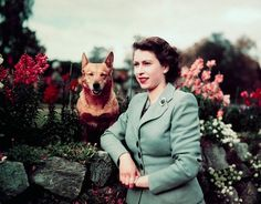 With corgi: Elizabeth in her garden, 1953.