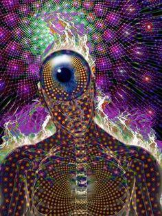 Portal 11 Acuario: El Campo Fractal-holográfico de la Vida