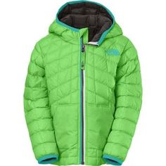 The North Face Thermoball Insulated Hooded Jacket - Toddler Boys'