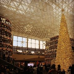. . . . . #library #starfield #coex #seoul #korea #book #books #tree #christmastree #christmaslight #star #stars #blingbling #winter #landmark #structure #interiordesign #construction #today #daily #travel #traveling #도서관 #책 #일상 #여행 #데일리 #별 #별마당도서관 #코엑스