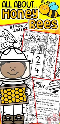 All About Honey Bees Honey Bee Life Cycle Parts of a Bee Life in a Bee Colony How Honey is Made Honey Bees Preschool Honey Bees Kindergarten Honey Bees First Grade Bees For Kids, Bee Crafts For Kids, Bee Activities, Kindergarten Activities, Honey Bee Life Cycle, Was Ist Pinterest, Bee Theme, Preschool Lessons, Honey Bees