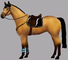 Design your own horse and dress it up with different pieces of tack to see what colour looks best. Read the instructions at the top of the page before starting. This picture is just a sample of what you can create. Lots more horsemakers to try too: western, eventing, show colours, etc.