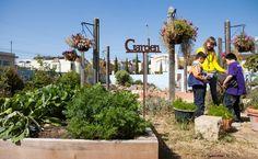 Turning School Gardens into Outdoor Classrooms.
