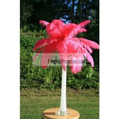 wholesale Hot Pink Color Ostrich Feather Centerpieces 6 Sets with vases for wedding and events Madi Gras discount cheap