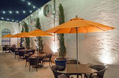 Welcome to Shaya. The James Beard Award winning restaurant that shares its take on modern Israeli cuisine in New Orleans, Louisiana. New Orleans Bars, Dating Site In Usa, Louisiana Homes, Outdoor Decor, Modern, Home Decor, Free, Courtyards, Trendy Tree