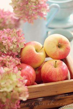 Apples ~