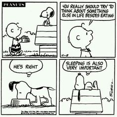 Sleeping is very important