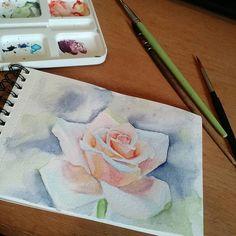 Finalizando um estudo em aquarela agora de manhã, pra começar bem o dia  ____________________________________ #watercolor #rose #ink #aquarela #drawing2me #study #art #rosa #painting #pintura #estudo #foco #bomdia