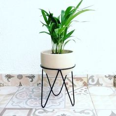 verjas Unique Home Decor - Thinking Outside the Box Home accents and surroundings today offer much m Blue Wall Decor, Diy Wall Decor, House Plants Decor, Plant Decor, Tall Plant Stands, Diy Wall Shelves, Unique Home Decor, Coastal Decor, Planting Flowers
